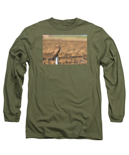 Common Buzzard Along The Highway Nis - Budapest Long Sleeve T-Shirt by Jivko Nakev