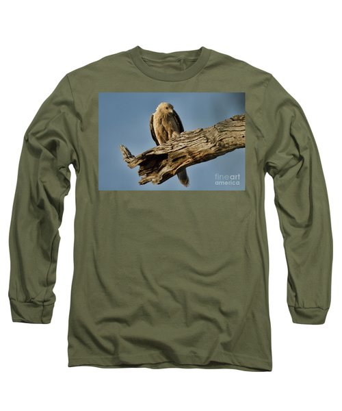 Curious Long Sleeve T-Shirt by Douglas Barnard