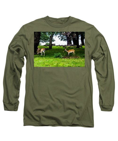 Deer In The Park Long Sleeve T-Shirt