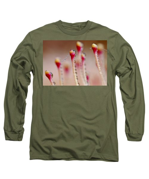 Dew Drops In A Row... Long Sleeve T-Shirt by Werner Lehmann