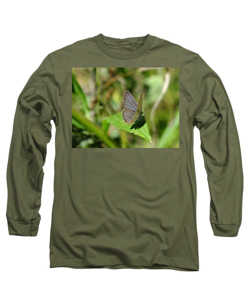 Eastern Tailed Blue Butterfly Long Sleeve T-Shirt