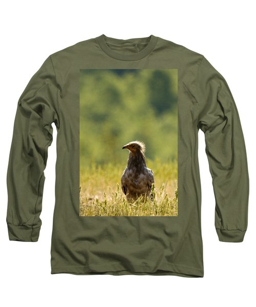 Egyptain Vulture  Long Sleeve T-Shirt
