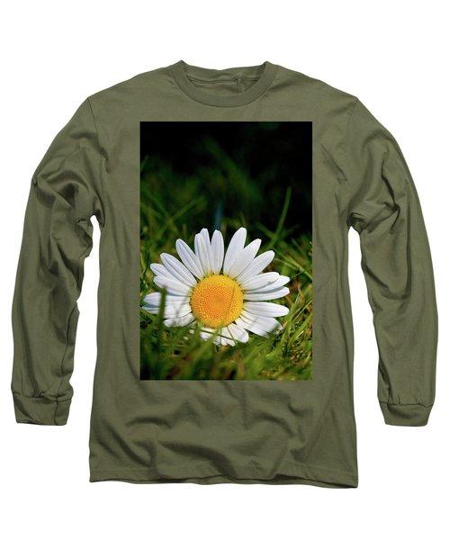 Fallen Daisy Long Sleeve T-Shirt by Scott Holmes