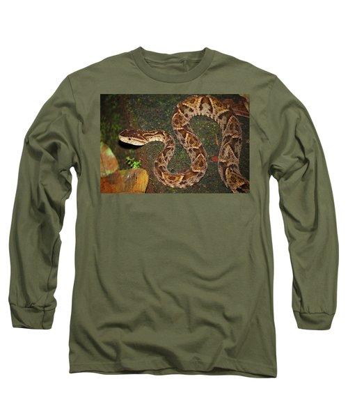 Long Sleeve T-Shirt featuring the photograph Fer-de-lance, Bothrops Asper by Breck Bartholomew