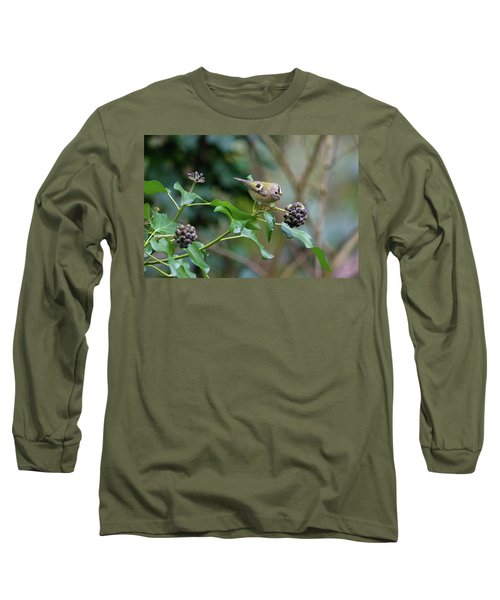 Goldcrest Long Sleeve T-Shirt by Matt Malloy