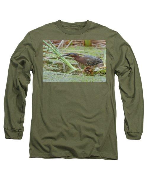 Green Heron Long Sleeve T-Shirt by Doug Herr