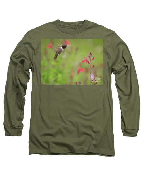 Hummingbird And Sage Long Sleeve T-Shirt