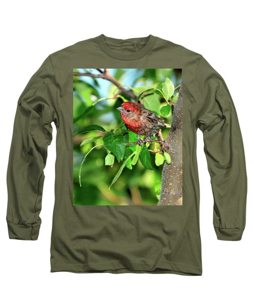 Inquisitive Long Sleeve T-Shirt