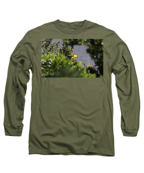 Is It Safe To Come Out? Long Sleeve T-Shirt