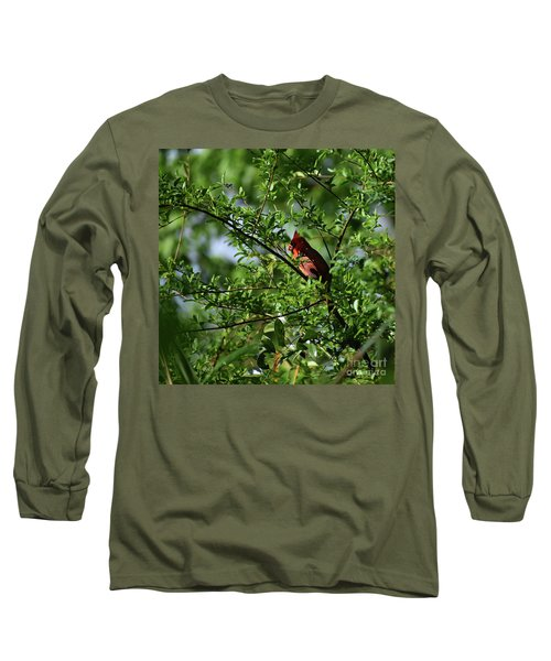Long Sleeve T-Shirt featuring the photograph Mr Red by Skip Willits