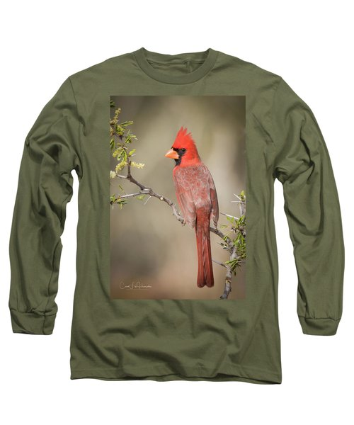 Northern Cardinal Cfh17765 Long Sleeve T-Shirt