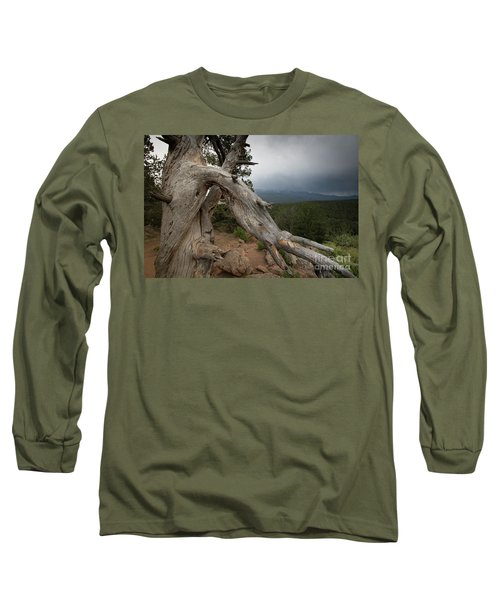 Old Tree On The Mountain Long Sleeve T-Shirt
