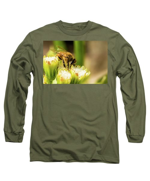 Pollen Collector  Long Sleeve T-Shirt by Jay Stockhaus