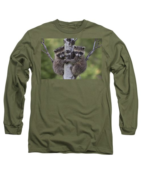 Raccoon Two Babies Climbing Tree North Long Sleeve T-Shirt