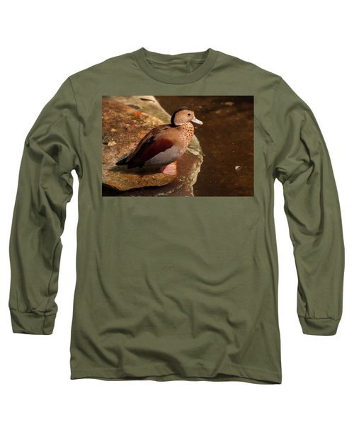 Ringed Teal On A Rock Long Sleeve T-Shirt by Chris Flees