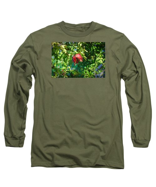 Ripe Pomegranate On The Tree In Jerusalem During Sukkoth Long Sleeve T-Shirt