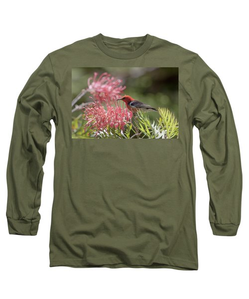 Scarlet Honeyeater Long Sleeve T-Shirt