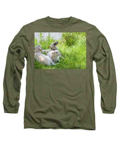 Long Sleeve T-Shirt featuring the photograph Three Little Lambs by Patricia Hofmeester