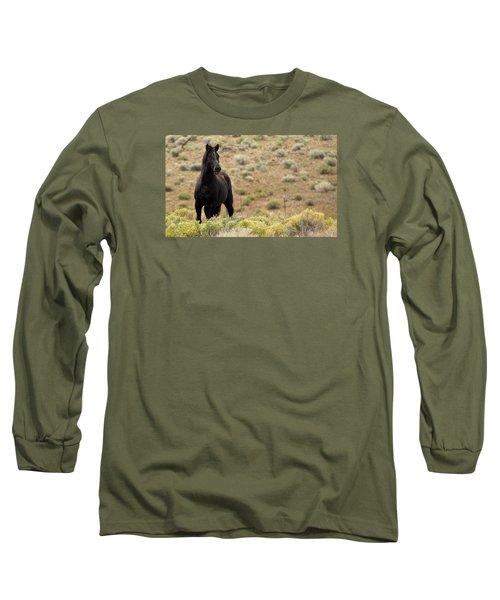Wild Black Mustang Stallion Long Sleeve T-Shirt