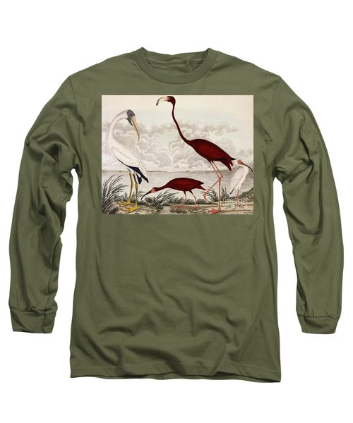 Wood Ibis, Scarlet Flamingo, White Ibis Long Sleeve T-Shirt by Alexander Wilson