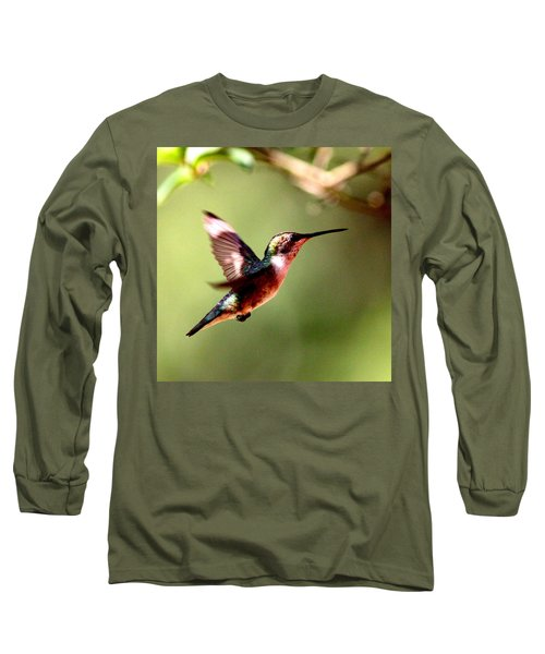 103456 - Ruby-throated Hummingbird Long Sleeve T-Shirt by Travis Truelove
