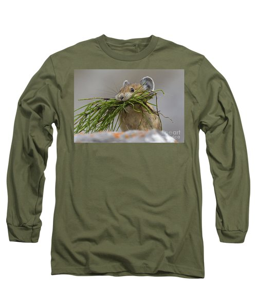 Pika With A Mouthful  Long Sleeve T-Shirt