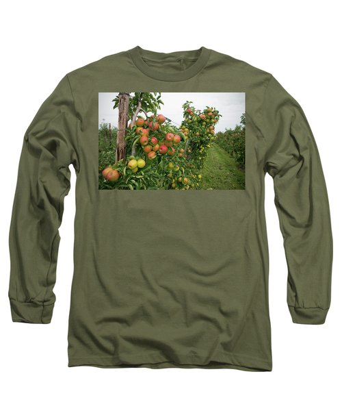 Apple Orchard Long Sleeve T-Shirt by Hans Engbers