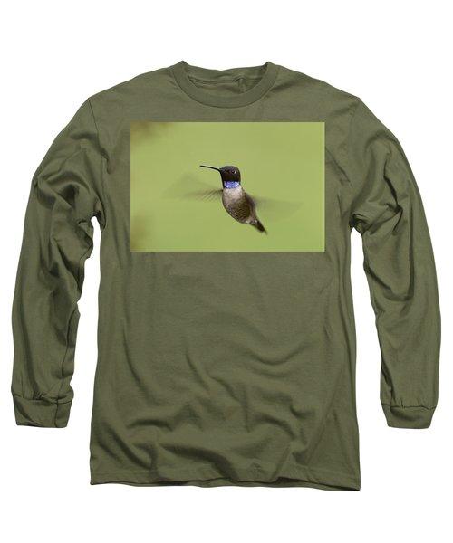 Black-chinned Hummingbird Long Sleeve T-Shirt by Doug Herr