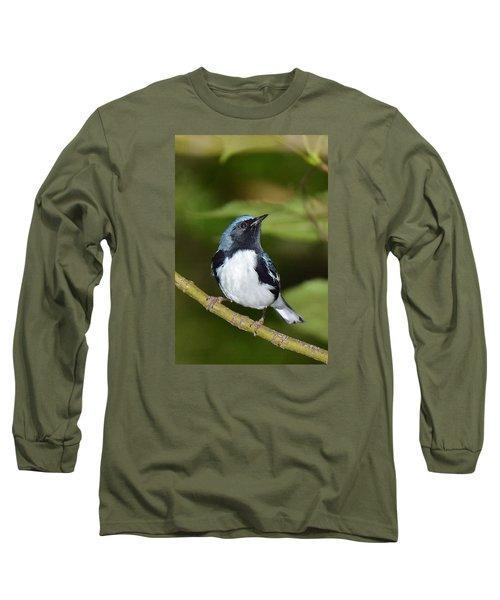 Black-throated Blue Long Sleeve T-Shirt by Alan Lenk