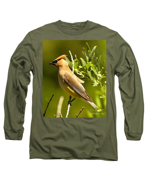 Cedar Waxwing Closeup Long Sleeve T-Shirt by Adam Jewell