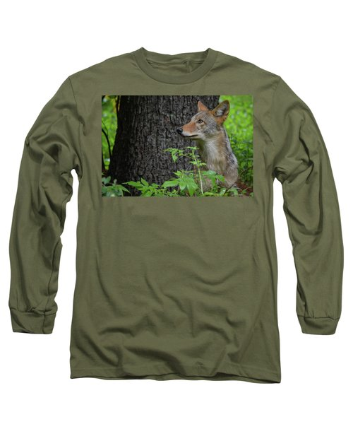 Early Morning Coyote In Maine Long Sleeve T-Shirt
