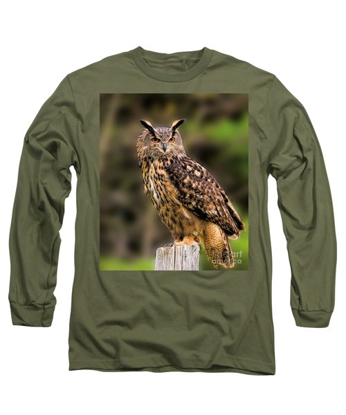 Eurasian Eagle Owl Perched On A Post Long Sleeve T-Shirt