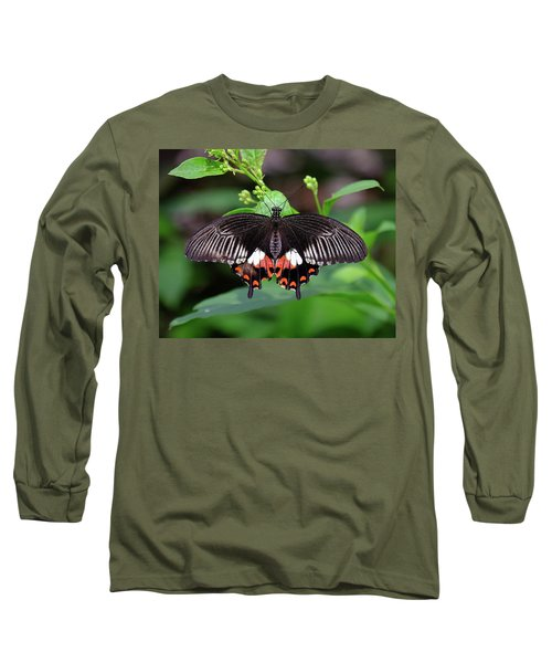 Great Mormon Butterfly Long Sleeve T-Shirt