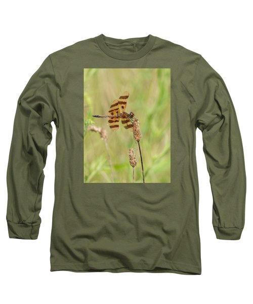 Halloween Pennant Long Sleeve T-Shirt