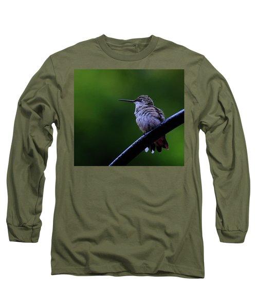 Hummingbird Portrait Long Sleeve T-Shirt by Ronda Ryan