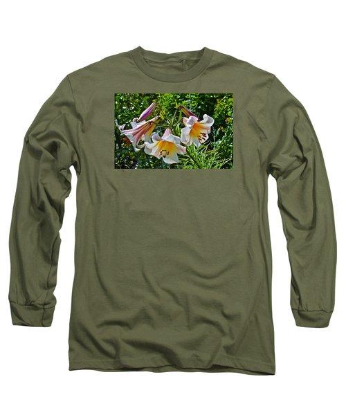 2015 Summer At The Garden Lilies In The Rose Garden 1 Long Sleeve T-Shirt