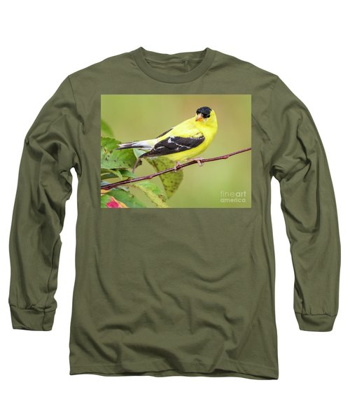 American Goldfinch Long Sleeve T-Shirt