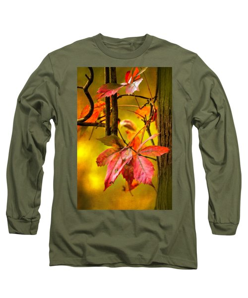 Long Sleeve T-Shirt featuring the photograph Fall Colors by Eduard Moldoveanu