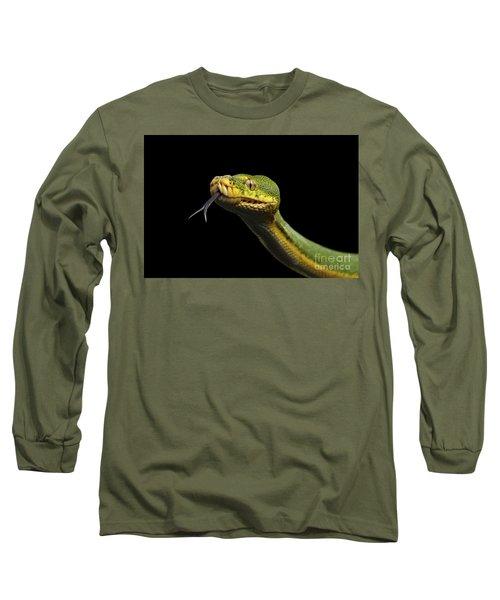 Green Tree Python. Morelia Viridis. Isolated Black Background Long Sleeve T-Shirt