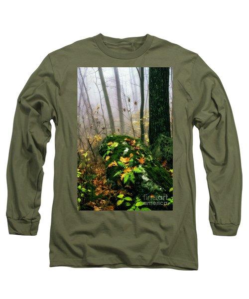 Autumn Monongahela National Forest Long Sleeve T-Shirt