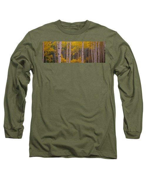 Aspen Trees In A Forest, Telluride, San Long Sleeve T-Shirt