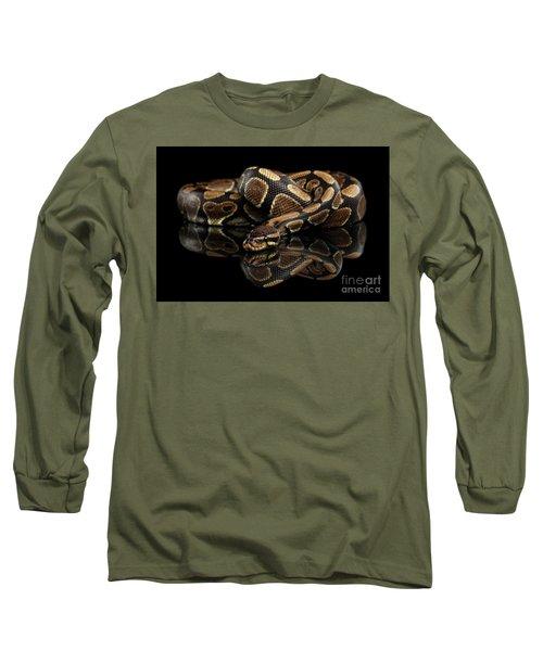 Ball Or Royal Python Snake On Isolated Black Background Long Sleeve T-Shirt