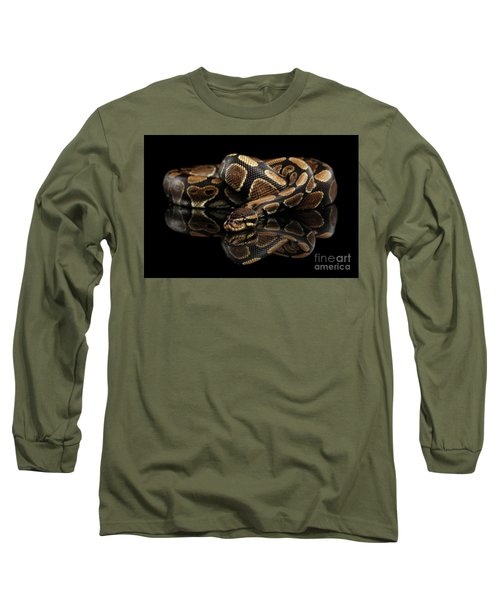 Ball Or Royal Python Snake On Isolated Black Background Long Sleeve T-Shirt