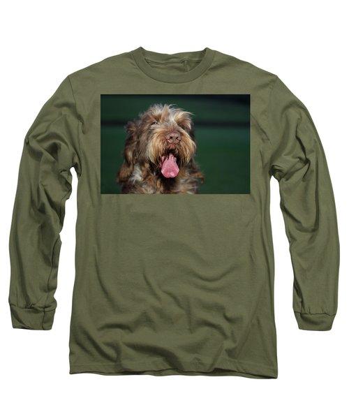 Brown Roan Italian Spinone Dog Head Shot Long Sleeve T-Shirt