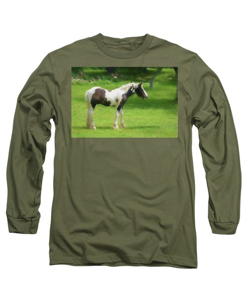 A Beautiful Young Gypsy Vanner Standing In The Pasture Long Sleeve T-Shirt