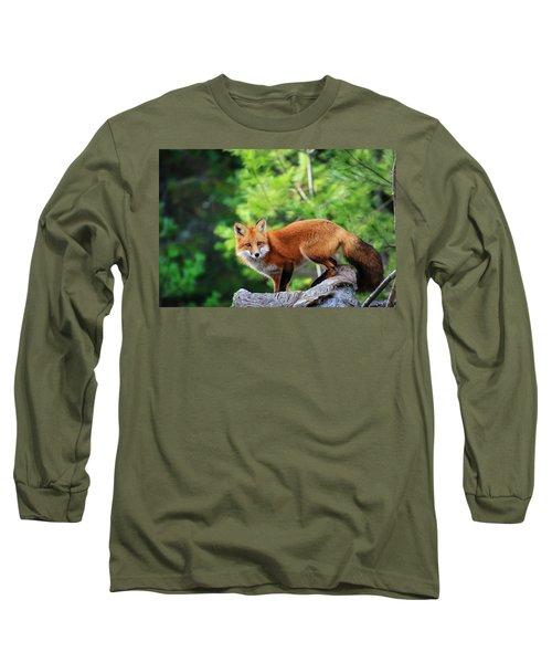 A Cunning Hunter Long Sleeve T-Shirt by Gary Hall