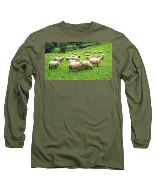 A Flock Of Sheep Long Sleeve T-Shirt