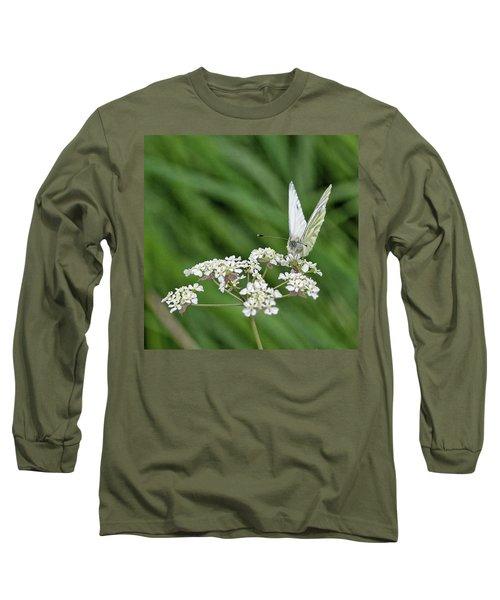 A Green-veined White (pieris Napi) Long Sleeve T-Shirt by John Edwards