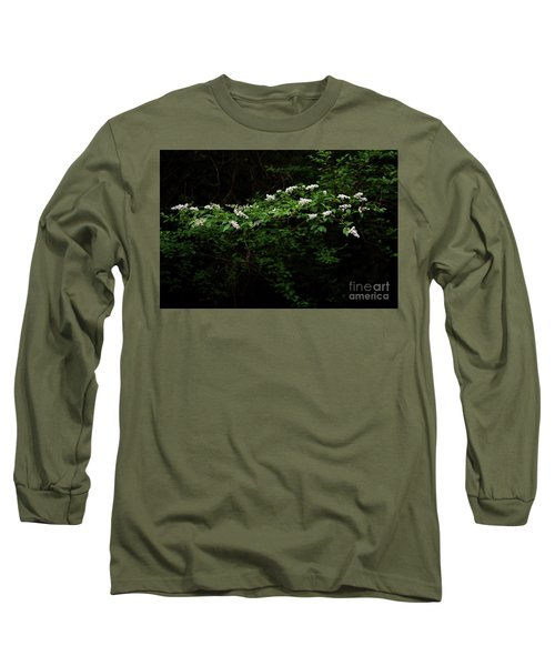 Long Sleeve T-Shirt featuring the photograph A Light In The Darkness by Skip Willits