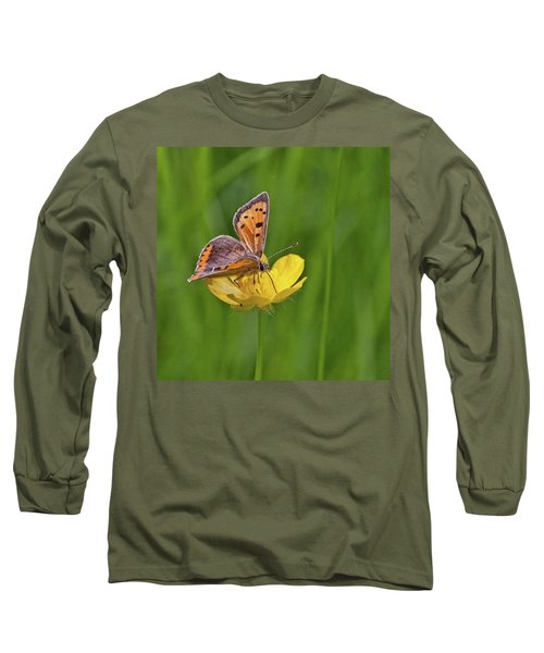 A Small Copper Butterfly (lycaena Long Sleeve T-Shirt